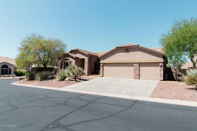 7920 E Saddleback Circle, Mesa, AZ 85207 (MLS #5818660) :: The Wehner Group
