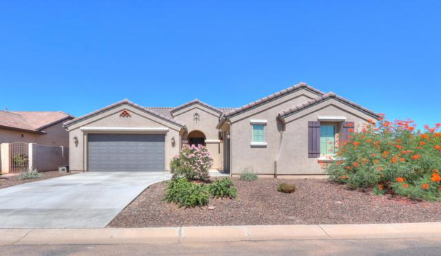 4744 W Nogales Way, Eloy, AZ 85131 (MLS #5818713) :: Santizo Realty Group