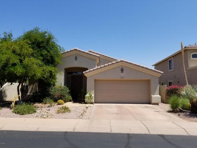 22029 N 51ST Street, Phoenix, AZ 85054 (MLS #5818728) :: Conway Real Estate
