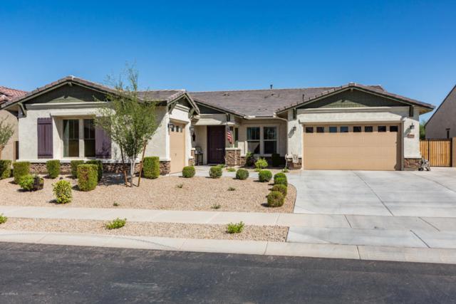 19904 E Apricot Lane, Queen Creek, AZ 85142 (MLS #5818759) :: Occasio Realty
