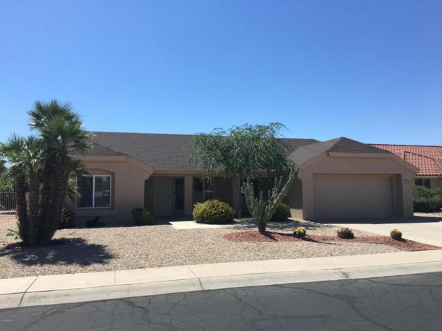 14603 W Sky Hawk Drive, Sun City West, AZ 85375 (MLS #5818812) :: The Wehner Group