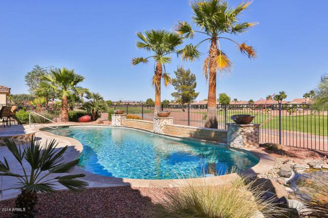 23115 N Hank Raymond Drive, Sun City West, AZ 85375 (MLS #5818831) :: Desert Home Premier