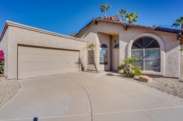 3860 E Tano Street, Phoenix, AZ 85044 (MLS #5818852) :: Team Wilson Real Estate