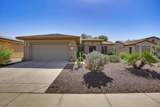 20451 N Sojourner Drive, Surprise, AZ 85387 (MLS #5818931) :: The Daniel Montez Real Estate Group