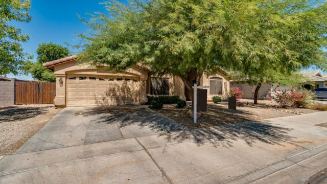 16778 W Pierce Street, Goodyear, AZ 85338 (MLS #5818936) :: The Jesse Herfel Real Estate Group