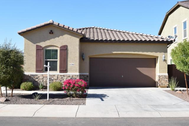 21286 W Coronado Road, Buckeye, AZ 85396 (MLS #5818964) :: Occasio Realty