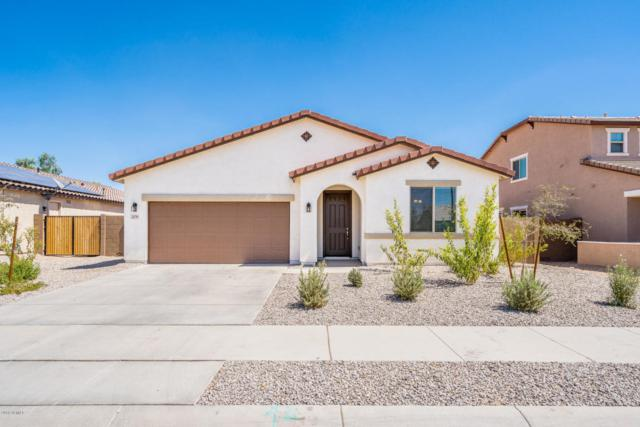 379 N 158TH Drive, Goodyear, AZ 85338 (MLS #5818981) :: The Garcia Group