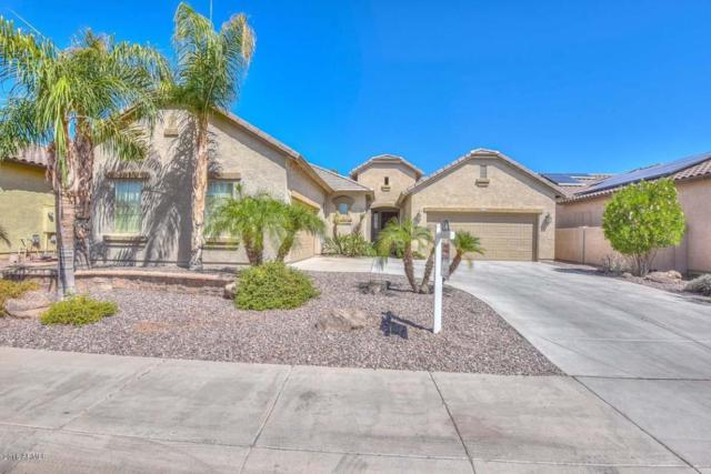 11954 W Jessie Lane, Sun City, AZ 85373 (MLS #5819068) :: REMAX Professionals