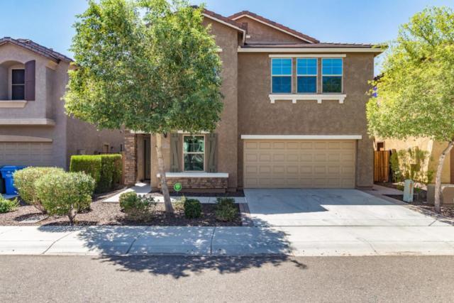 5429 W Parsons Road, Phoenix, AZ 85083 (MLS #5819083) :: REMAX Professionals