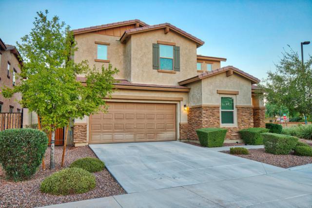 4112 S Butte Lane, Gilbert, AZ 85297 (MLS #5819115) :: The Garcia Group @ My Home Group