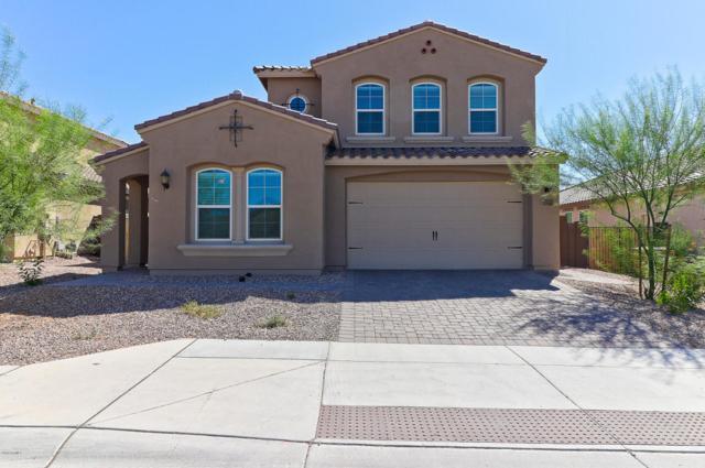 32205 N 132ND Avenue, Peoria, AZ 85383 (MLS #5819121) :: Arizona 1 Real Estate Team