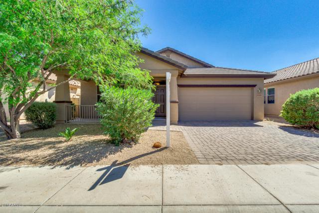 44439 W Bailey Drive, Maricopa, AZ 85138 (MLS #5819183) :: Occasio Realty