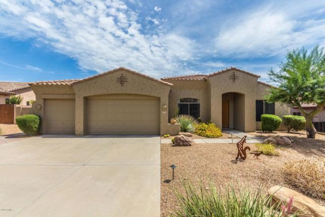 4075 S Tigre Del Mar Drive, Gold Canyon, AZ 85118 (MLS #5819248) :: Conway Real Estate