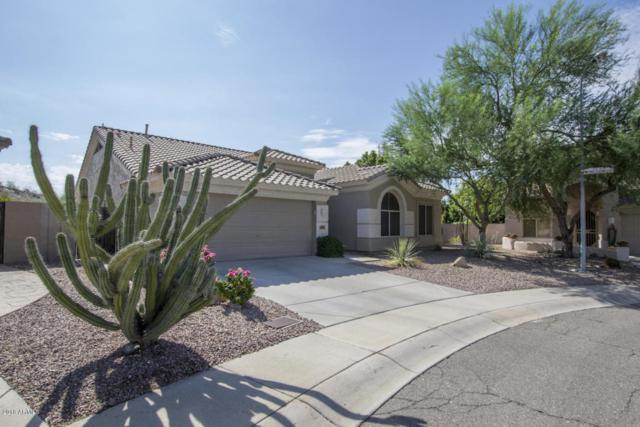1302 W Deer Creek Road, Phoenix, AZ 85045 (MLS #5819261) :: The Garcia Group @ My Home Group
