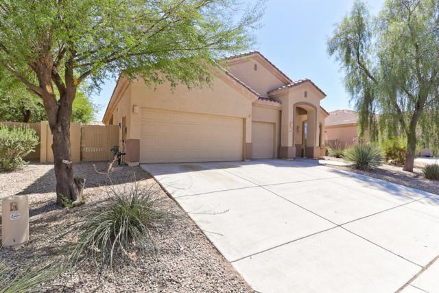 18357 W Estes Way, Goodyear, AZ 85338 (MLS #5819276) :: Kortright Group - West USA Realty