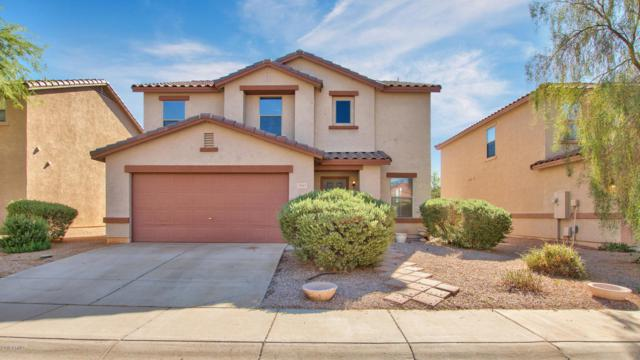 2941 S Mandy Circle, Mesa, AZ 85212 (MLS #5819297) :: Occasio Realty