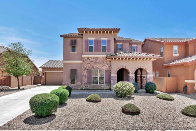 44053 W Palo Abeto Drive, Maricopa, AZ 85138 (MLS #5819329) :: The Everest Team at My Home Group