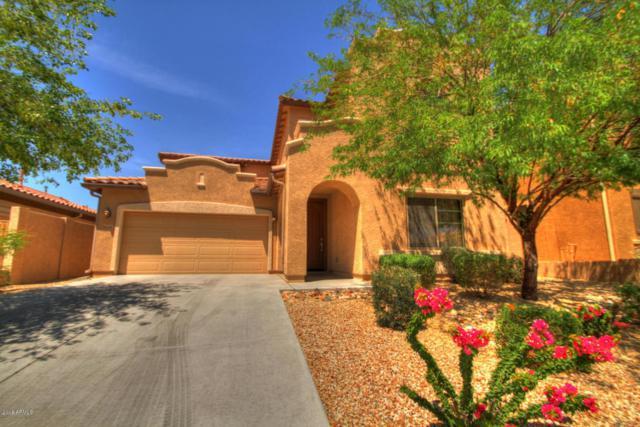 5526 W Molly Lane, Phoenix, AZ 85083 (MLS #5819412) :: REMAX Professionals