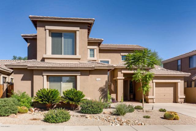 24553 N 75TH Way, Scottsdale, AZ 85255 (MLS #5819428) :: Santizo Realty Group