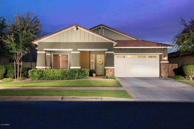 3641 E Palo Verde Street, Gilbert, AZ 85296 (MLS #5819440) :: Occasio Realty