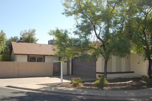1832 S Cholla, Mesa, AZ 85202 (MLS #5819470) :: Revelation Real Estate