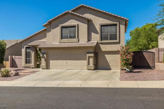 1730 E Rose Garden Lane, Phoenix, AZ 85024 (MLS #5819502) :: The W Group