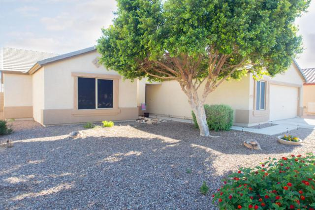 16341 W Ironwood Street, Surprise, AZ 85388 (MLS #5819508) :: Sibbach Team - Realty One Group