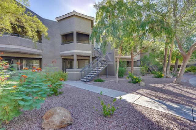 1720 E Thunderbird Road #2058, Phoenix, AZ 85022 (MLS #5819539) :: Brett Tanner Home Selling Team
