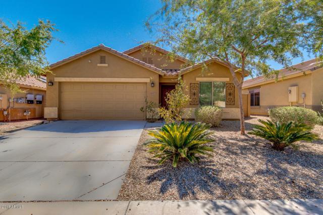 18367 W Sanna Street, Waddell, AZ 85355 (MLS #5819762) :: Phoenix Property Group