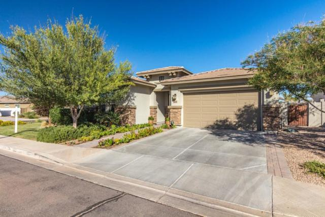 6639 S Champagne Way, Gilbert, AZ 85298 (MLS #5819794) :: The Jesse Herfel Real Estate Group