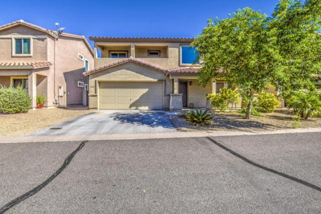 2306 E 27TH Avenue, Apache Junction, AZ 85119 (MLS #5819800) :: Occasio Realty