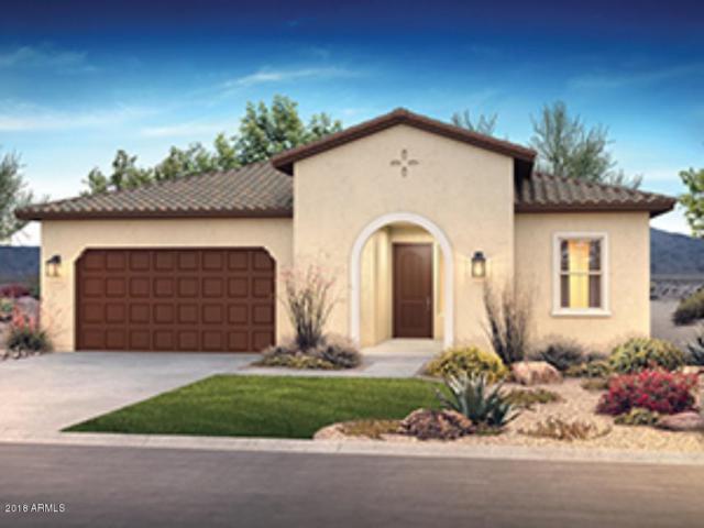 13169 W Duane Lane, Peoria, AZ 85383 (MLS #5819826) :: Sibbach Team - Realty One Group