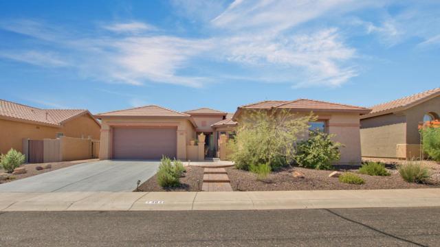 3629 W Links Drive, Phoenix, AZ 85086 (MLS #5819829) :: Santizo Realty Group