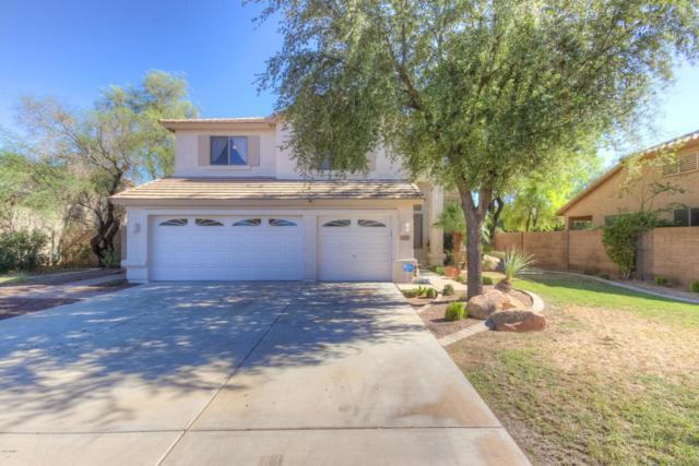 135 N 119TH Drive, Avondale, AZ 85323 (MLS #5819842) :: RE/MAX Excalibur