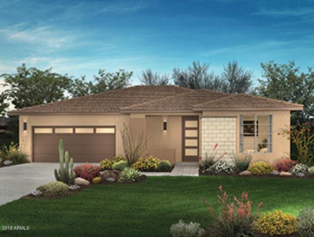 13200 W Hummingbird Terrace, Peoria, AZ 85383 (MLS #5819866) :: Sibbach Team - Realty One Group