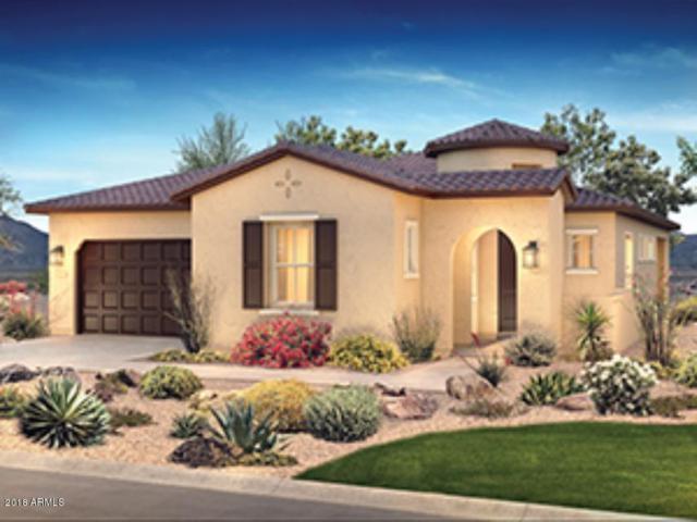 29344 N 132ND Lane, Peoria, AZ 85383 (MLS #5819876) :: Sibbach Team - Realty One Group