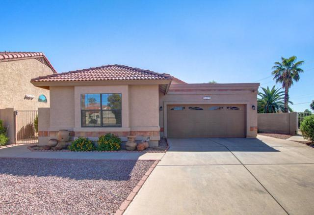 1677 E Cindy Street, Chandler, AZ 85225 (MLS #5819927) :: The Everest Team at My Home Group