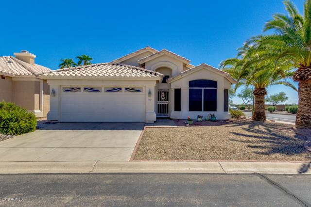 11679 W Yucca Court, Surprise, AZ 85378 (MLS #5819955) :: The Garcia Group @ My Home Group
