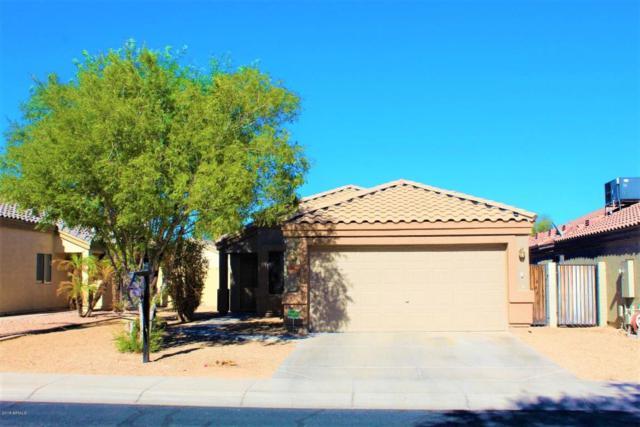 14305 N 129TH Avenue, El Mirage, AZ 85335 (MLS #5819963) :: Kelly Cook Real Estate Group