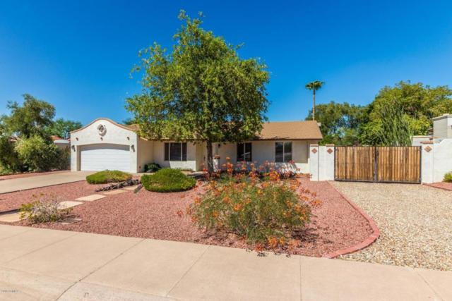 838 E Caribbean Lane, Phoenix, AZ 85022 (MLS #5819996) :: The Garcia Group @ My Home Group