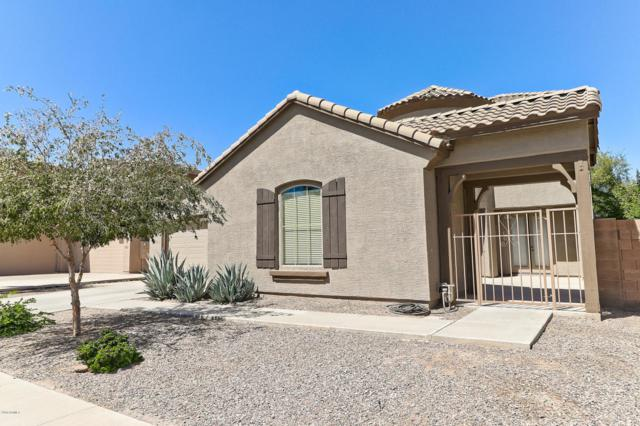 2578 E Desert Broom Place, Chandler, AZ 85286 (MLS #5820041) :: The Daniel Montez Real Estate Group
