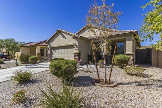 23650 W Mohave Street, Buckeye, AZ 85326 (MLS #5820059) :: The Results Group