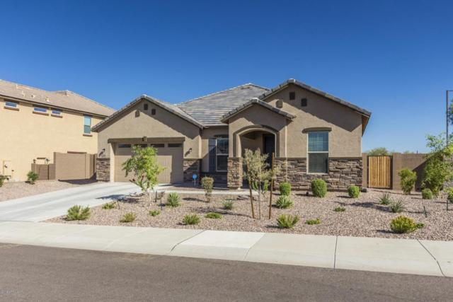 3806 W Abrams Drive, New River, AZ 85087 (MLS #5820096) :: Riddle Realty
