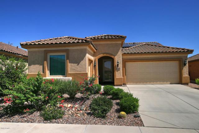 4523 N Petersburg Drive, Florence, AZ 85132 (MLS #5820117) :: Occasio Realty
