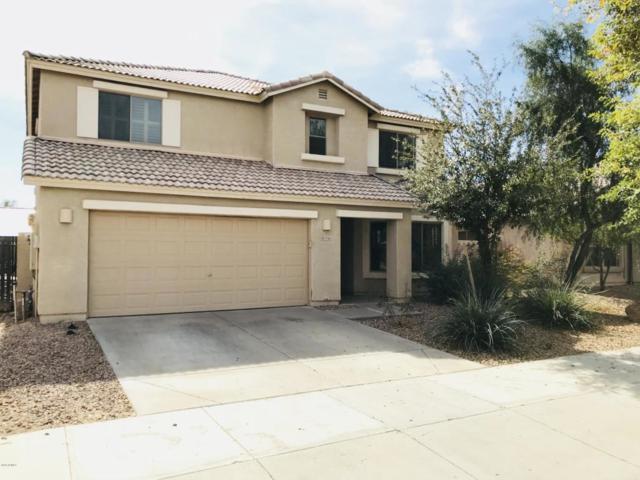 17163 W Hilton Avenue, Goodyear, AZ 85338 (MLS #5820128) :: Lifestyle Partners Team
