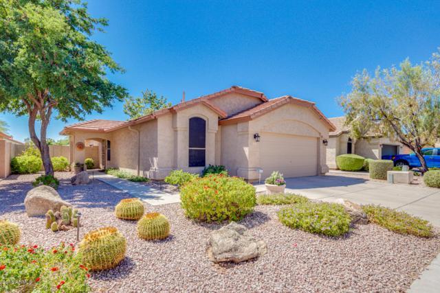 4619 E Adobe Drive, Phoenix, AZ 85050 (MLS #5820143) :: Conway Real Estate