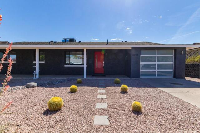 4013 N 81 Street, Scottsdale, AZ 85251 (MLS #5820180) :: Team Wilson Real Estate
