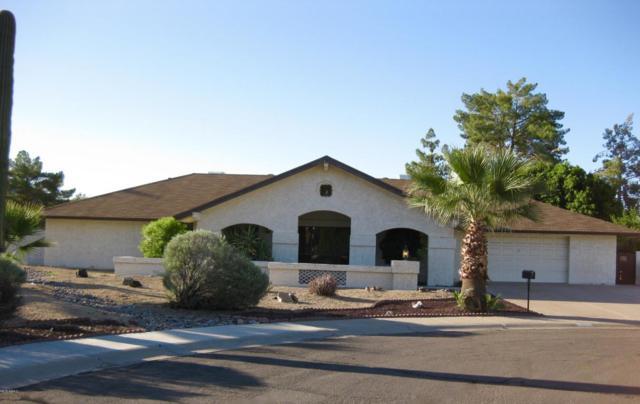 1971 E Bendix Drive, Tempe, AZ 85283 (MLS #5820181) :: Keller Williams Realty Phoenix