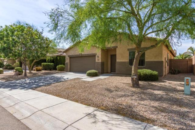 2863 W William Lane, San Tan Valley, AZ 85142 (MLS #5820182) :: The Everest Team at My Home Group