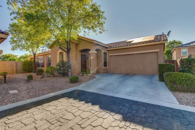 17041 W Marconi Avenue, Surprise, AZ 85388 (MLS #5820241) :: Occasio Realty